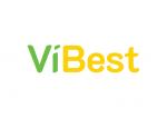 Vibest_logo